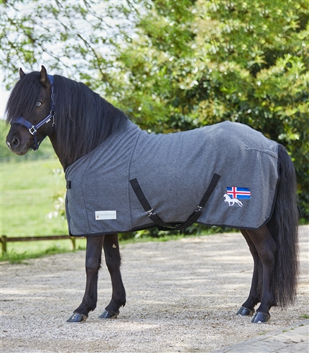Waldhausen with Icelandic Flag and Horse