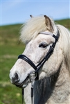 Eques Icelandic Bridle Set with Cavesson Noseband