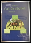 GAIT DISTRIBUTION DVD